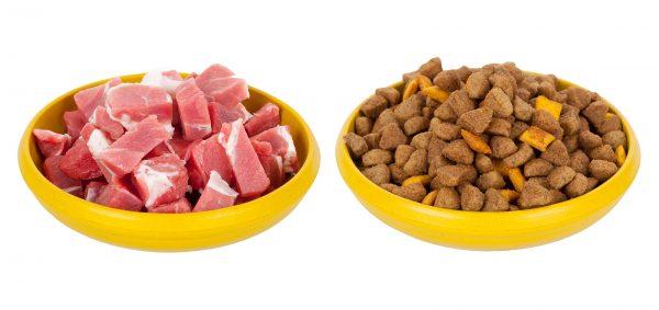 Dvě misky: s masem a suchým jídlem