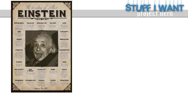 SIW-Nerd-House-Art-Einstein