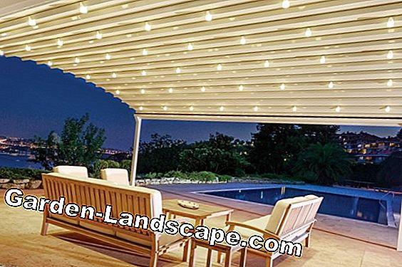 garden practice terrace roof glass wood or aluminum 2021