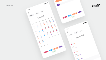 Day 260 - Minimal Expense Tracking App - Project365