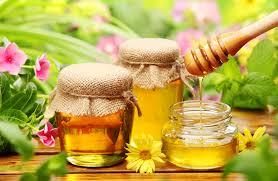 organic-honey-new