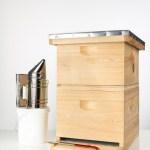 custom beehive