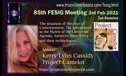 KERRY SPEAKS TO A FREE ENERGY GROUP – FESIG RE WAR ON CONSCIOUSNESS