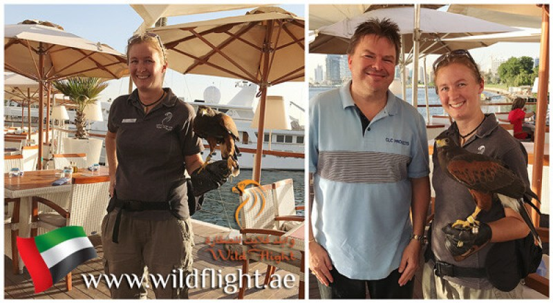 www.wildflight.ae