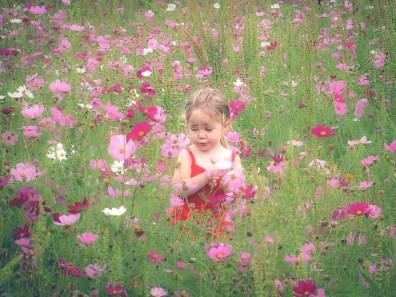 A girl sits amid pink wildflowers NotSoSAHM