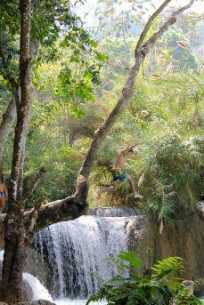David jumping from a tree into Kuang Si Falls