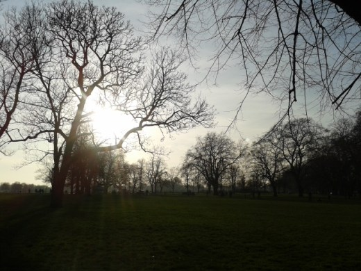 Clapham Common sunset