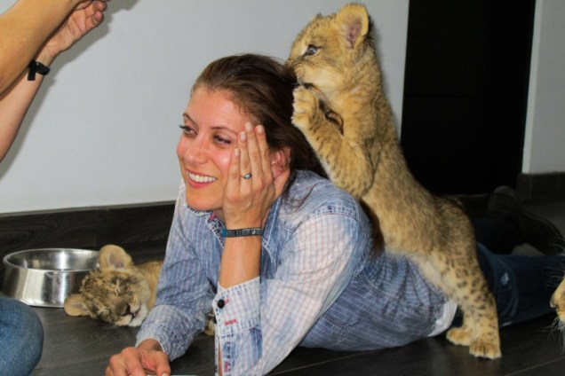 Kate Walsh comes to Blackjaguarwhitetiger Foundation to show her full support. Kate learns a lot of how the Foundation runs from Founder Eduardo Serio. Kate gets to spend time with 5 month old pumas, 4 month old lions, a 5 month old black jaguar, 250 pound year old lions, and gets to play with and feed lion cubs. Pictured: Kate Walsh Ref: SPL996172 140415 Picture by: EBLV / Splash News Splash News and Pictures Los Angeles: 310-821-2666 New York: 212-619-2666 London: 870-934-2666 photodesk@splashnews.com