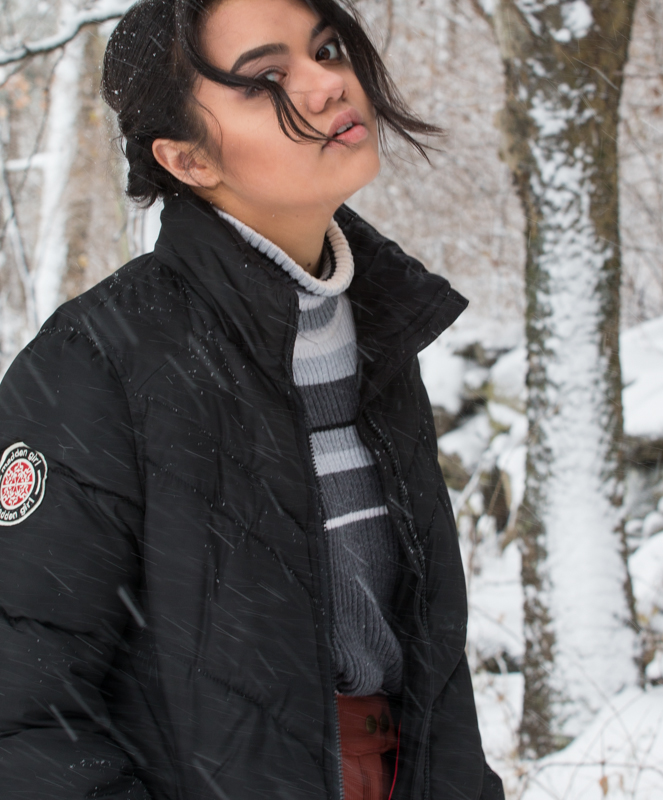 Snow2016FIN-6601