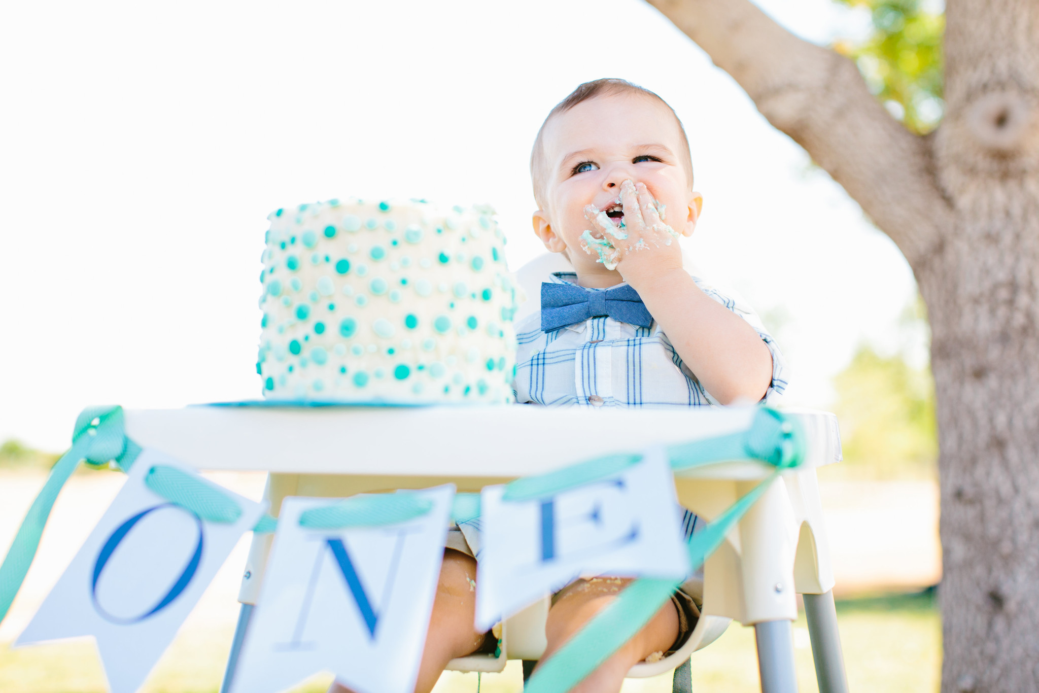 A First Birthday Picnic In The Park