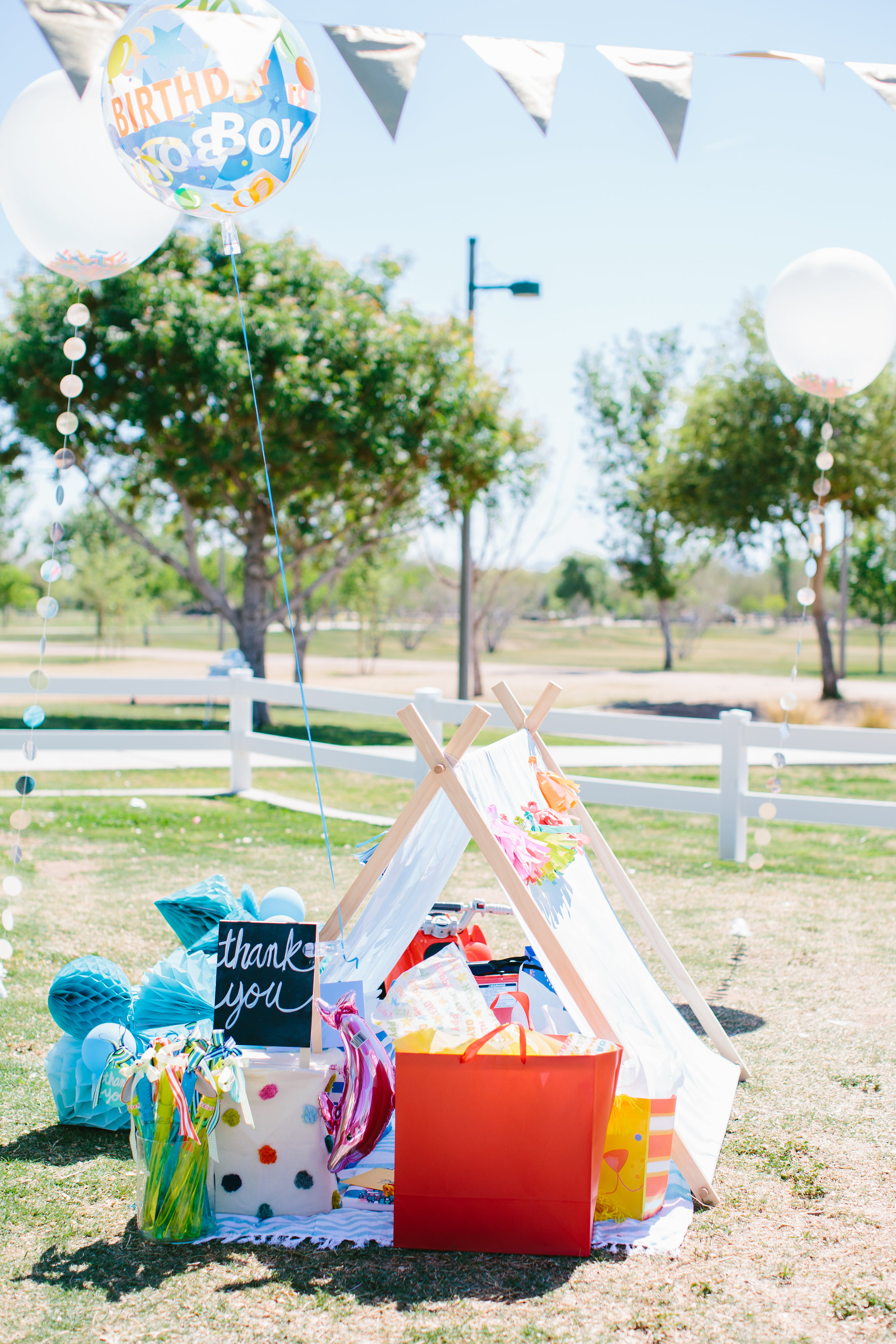 A First Birthday Picnic In The Park Project Nursery