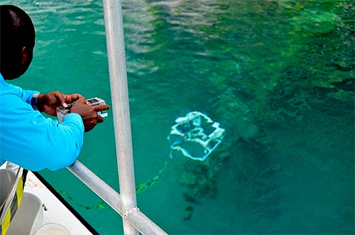 learning to pilot rov in palau