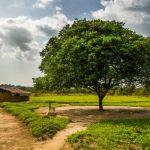village réplique démocratique congo