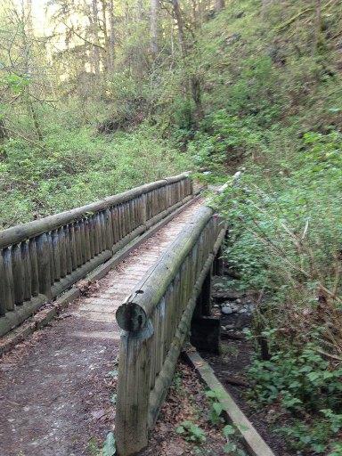 Wooden bridge crossing a stream on Squak Mountain in Issaquah, Washington
