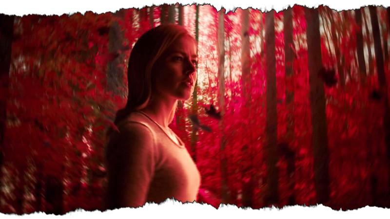 06_Cassie_RedForest1+