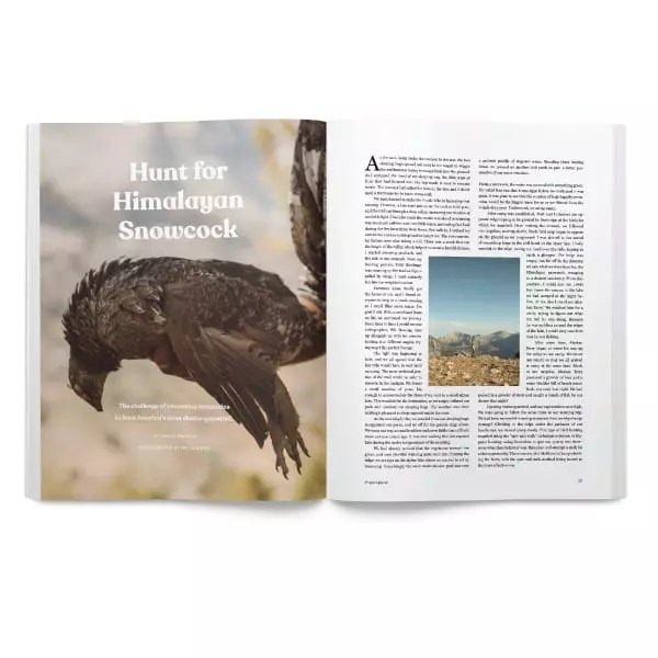 Hunting the Himalayan Snowcock - Project Upland Magazine