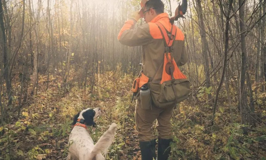 Hartley the English setter with Project Upland Podcast host Nick Larson hunting grouse in Minnesota.