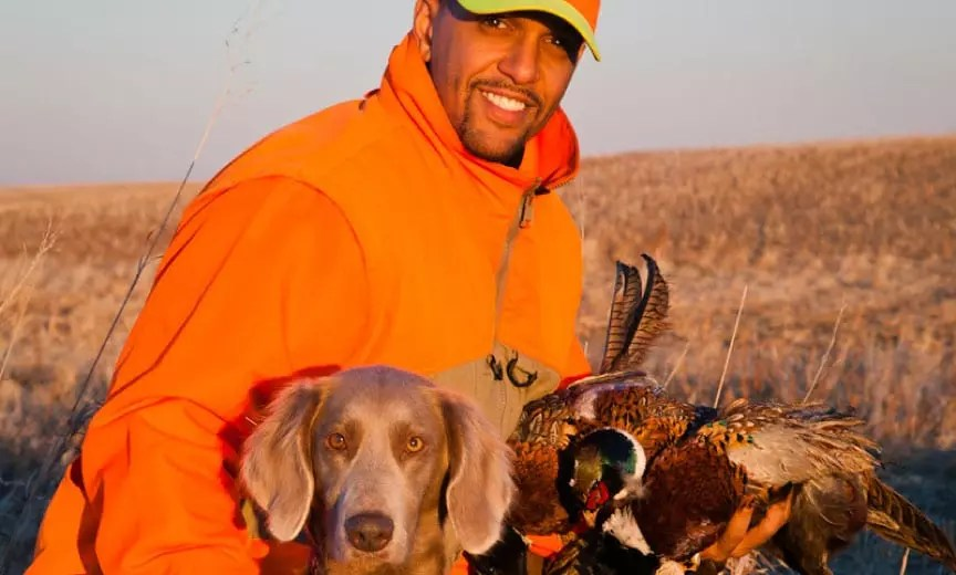 A black hunter on a pheasant hunt.