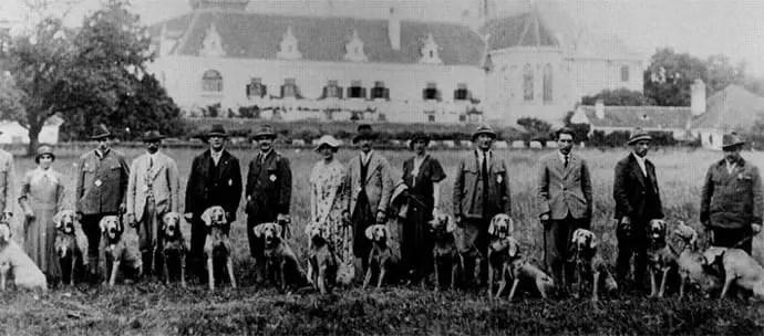 Austrian Weimaraner club 1946