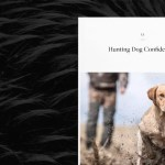 hunting dog confidential cover
