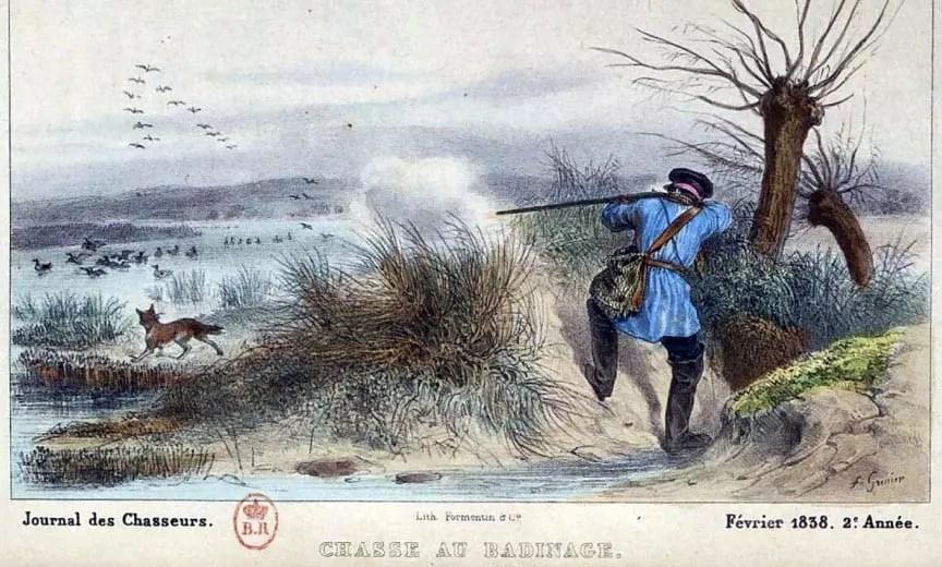 A French trapper using a Nova Scotia Duck Tolling Retriever to hunt ducks.