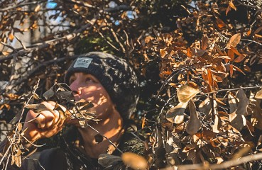 A duck hunter calls while hidden in a natural blind