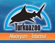Turkuazoo Istanbul