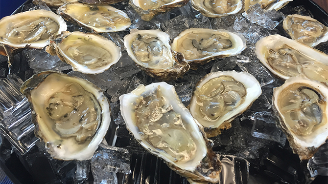Marketing Oysters