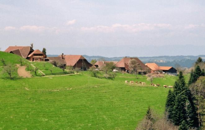 Blick auf Rothenbühl