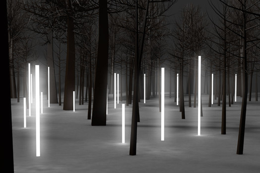 Forest Lighting Led