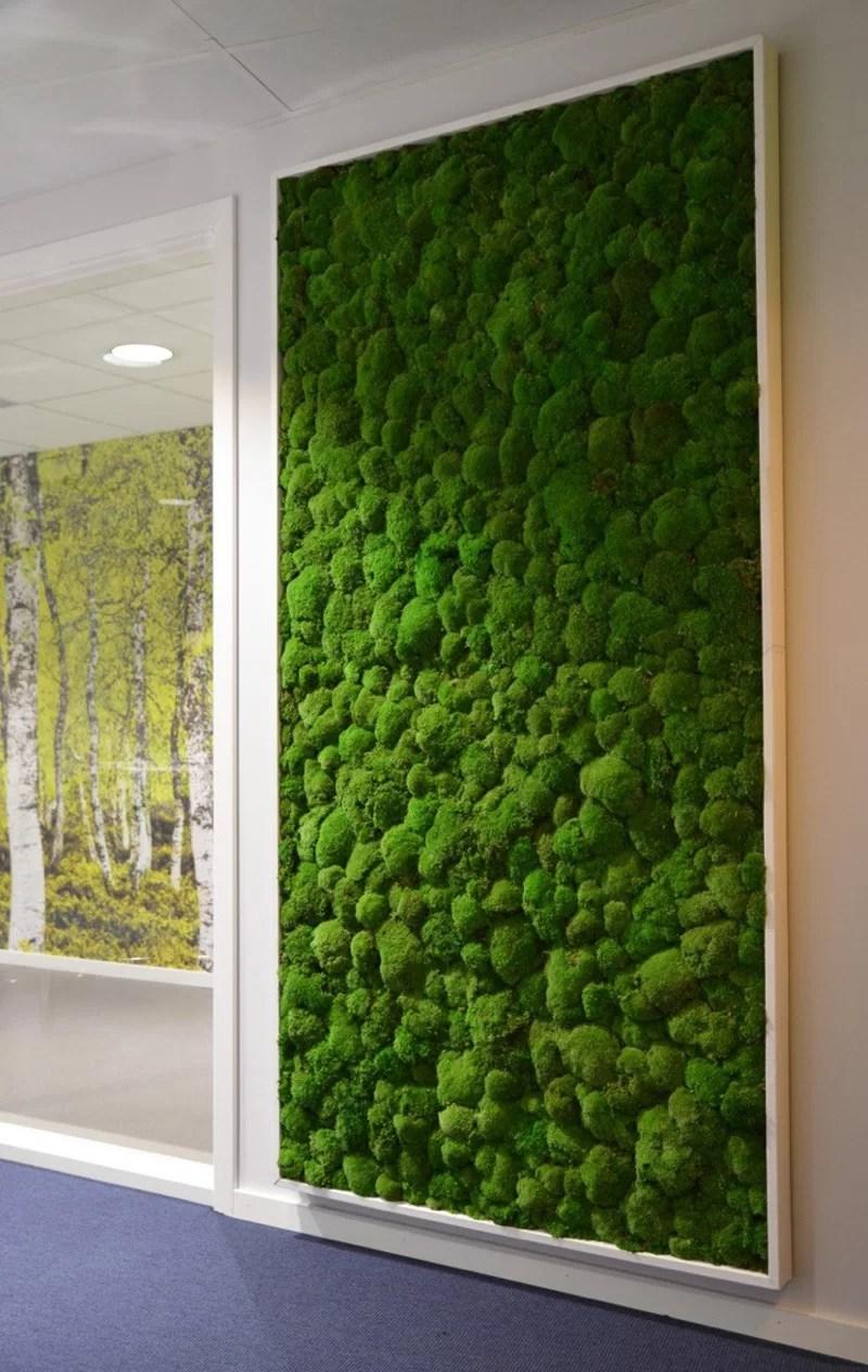 Moss Wall Art