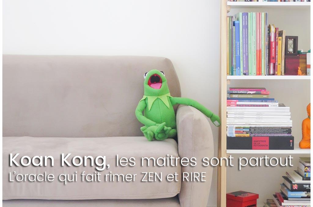 Koan Kong ! L'oracle zen de la culture jedi