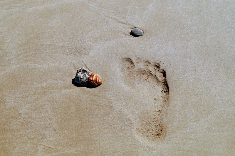 footprint Photo by Pascal Müller on Unsplash