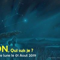 Nouvelle lune du Lion, le 1er Aout. QUI SUIS JE ?