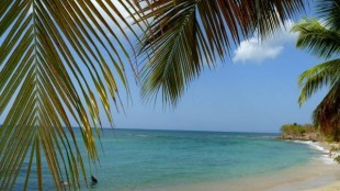 Tahiti un paradis survivaliste?