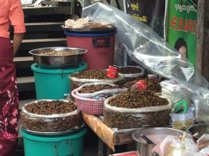 Yangon - cafards grillés