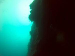 Plongee Belize - 04