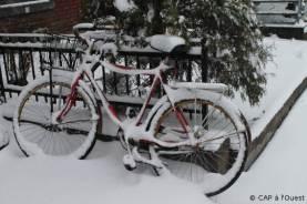 Vélo sous la neige à Montréal