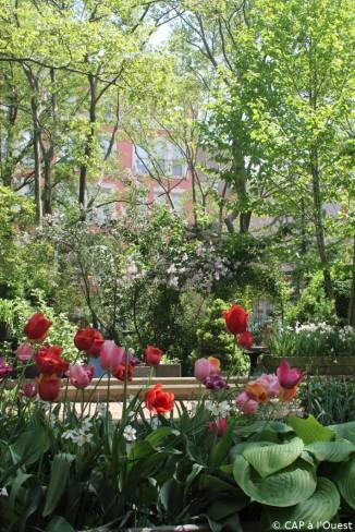 jardin urbain communautaire dans Mahattan