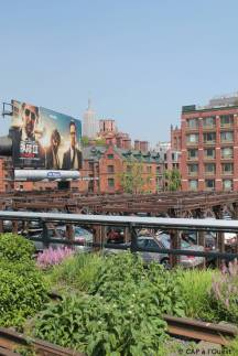 Vue sur l'Empire State Building depuis la High Line