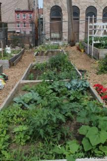 Carrés individuels Sewing Seeds Garden