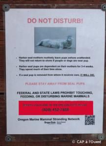 Delations environnementales pour le bien des otaries...