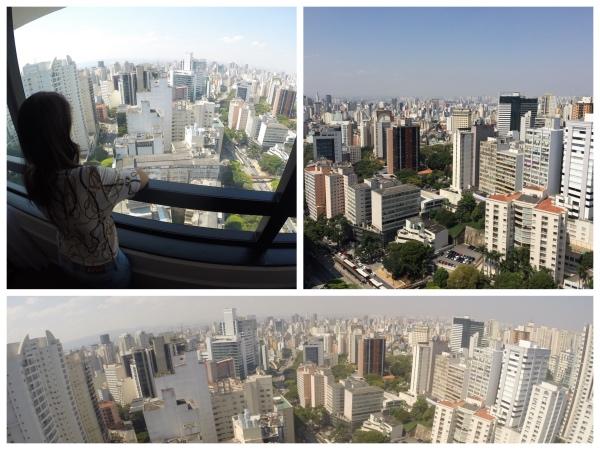 vista-blue-tree-paulista