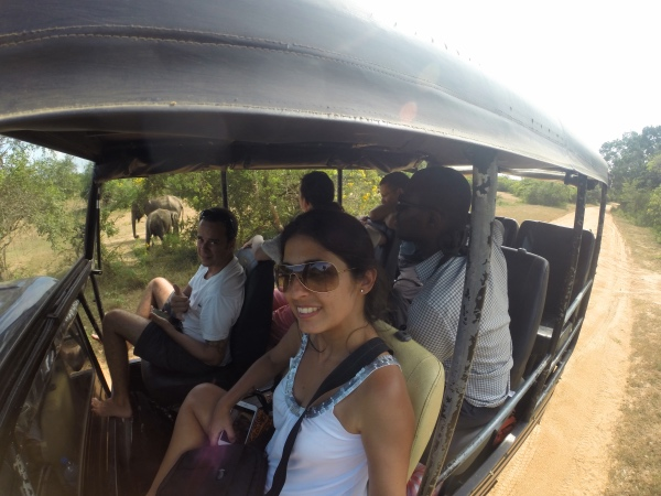 Safari no Yala National Park