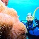 Cairns - Austrália (Conexão com o mundo marino)