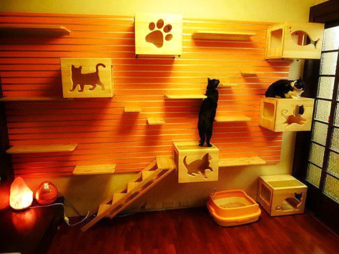 Creative-Decor-for-cats-1