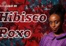 RedomasCast 20 – Hibisco Roxo (Chimamanda Ngozi Adichie)
