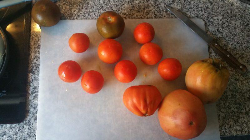 Receita de polpa de tomate | Projetos da Xana