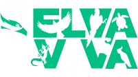 Projeto Selva Viva
