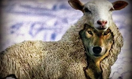 Cuidado com os Enganos no Despertar da Consciência